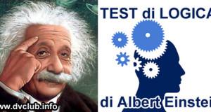 Il famoso test di logica di Einstein
