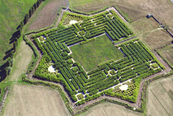 Il labirinto più grande del mondo 5