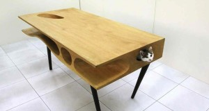 cat table micio friendly