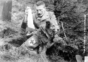 1914-18: la Guerra e gli animali