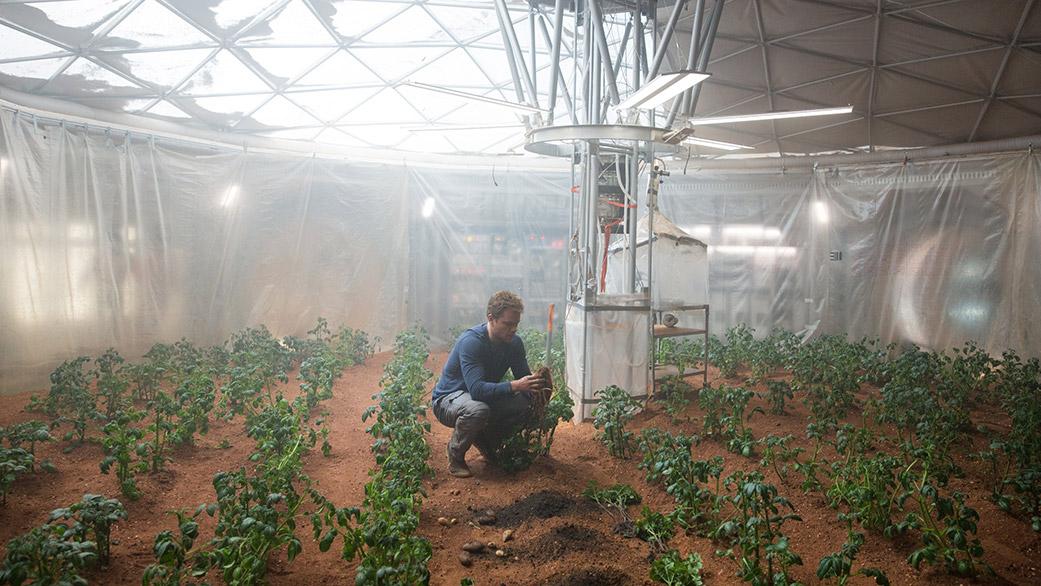 Fiori su Marte: il successo della serra Veggie