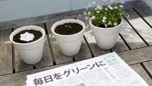 Dal Giappone arriva il giornale che fiorisce