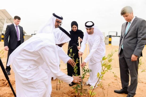 AD ABU DHABI LA PRIMA FARM CHE COLTIVA CIBO E BIOCOMBUSTIBILE