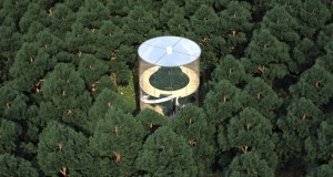 Treehouse in Kazakhstan – Casa di vetro abbraccia albero gigante