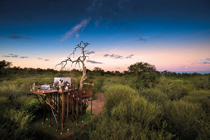 AFRICA – IL TREEHOUSE RESORT PER DORMIRE SOTTO LE STELLE