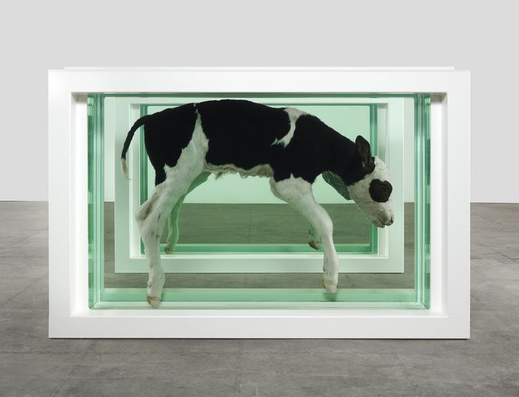 Damien Hirst mostra Venezia
